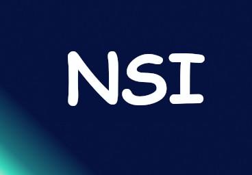 image nsi